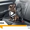 Škoda s'occupe de la sécurité de votre chien