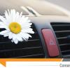 Clim auto : comment respirer un air sain dans sa voiture ?