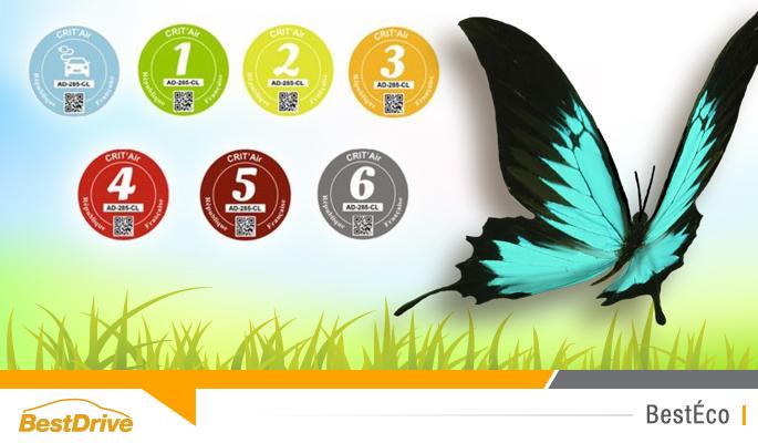 BestDrive - Pastille verte Loi Royal Crit'Air