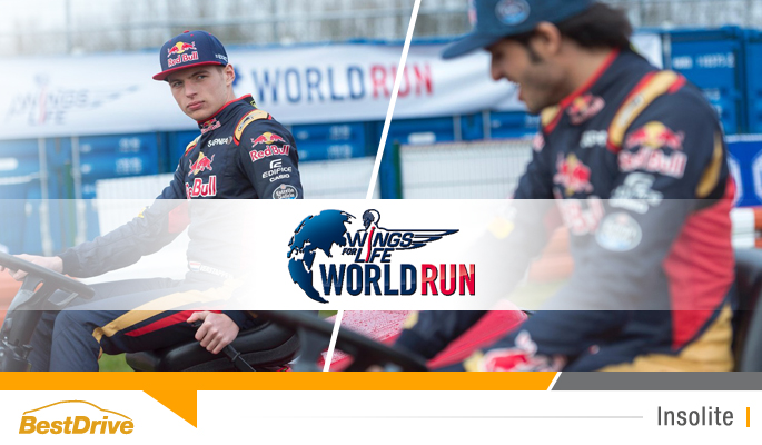 BestDrive - Wings for life World Run France 2016 Carlos Sainz et Max Verstappen
